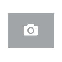 épilateur visage, Portable indolore Visage Épilateur Femme visage à cheveux Epilateur Retire Efficacement les Poils Disgracieux du Visage,Femme Electrique Rasoir (USB rechargeable)